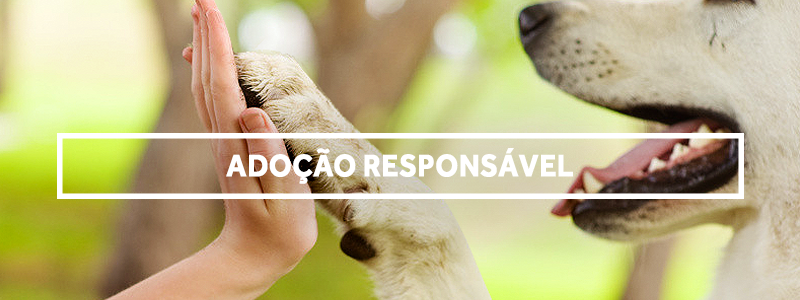 adocaoresponsavel-blog