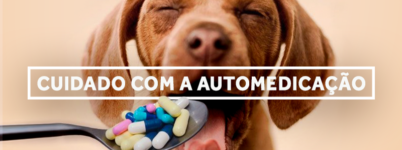 automedicacao-blog