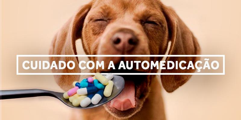automedicacao-blog