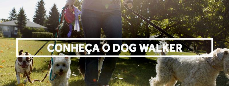 dogwalker-blog
