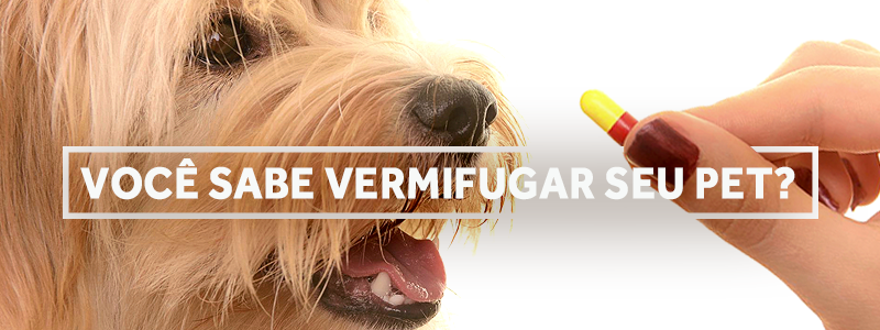 vermifugacao-blog