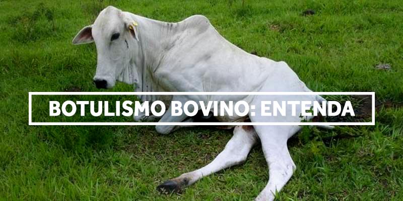 botulismo-blog