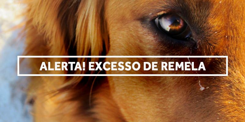 excessoderemela-blog