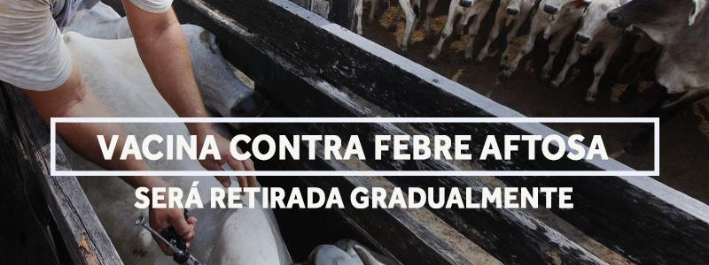 febreaftosa-blog
