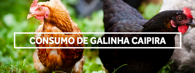 galinhacaipira-blog