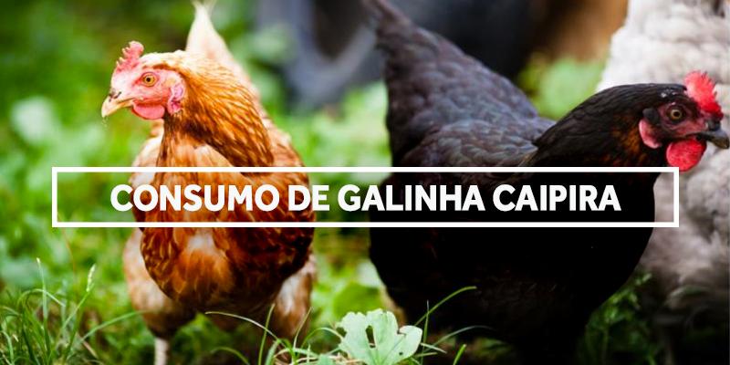 galinhacaipira-blog