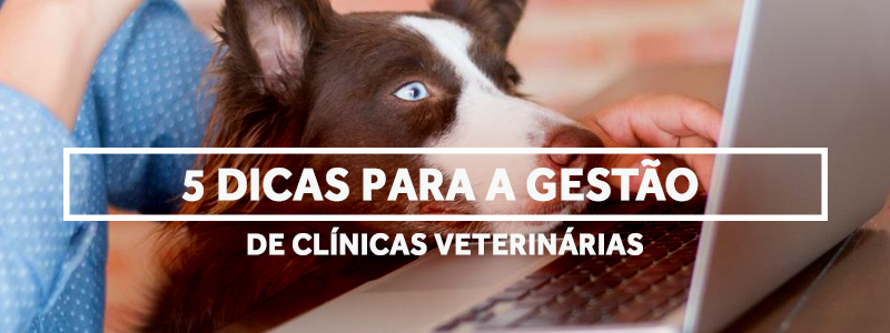 gestaodeclinicas-blog