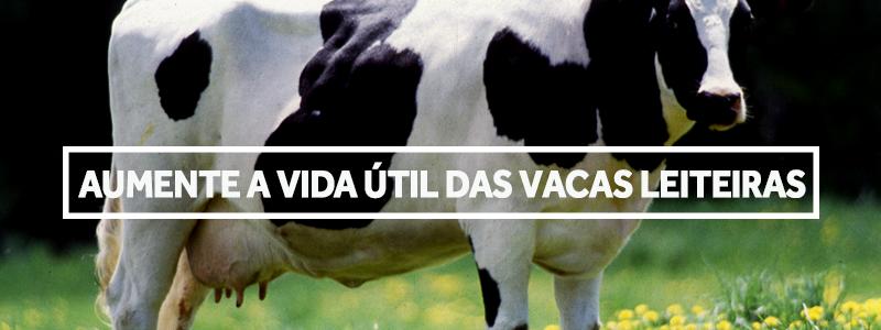 vidautilvacaleiteira-blog